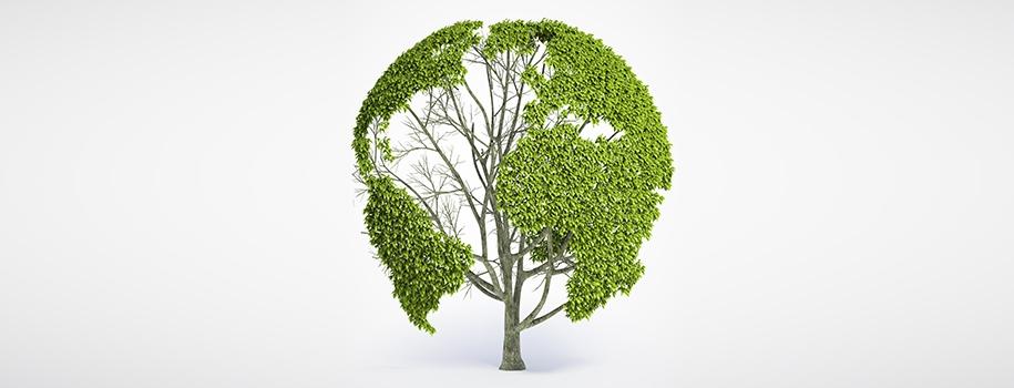 Tecnologia Green
